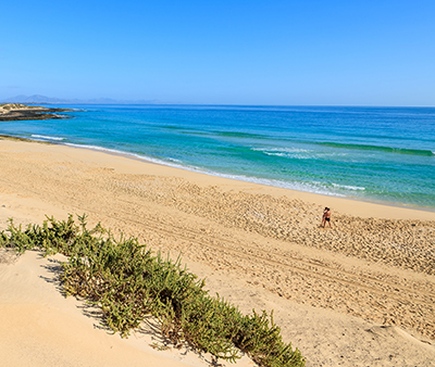 /media/28808362/corralejo-beach.jpg