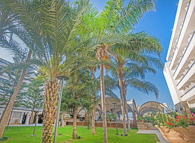 Adams Beach Hotel Semeli Gardens,21305