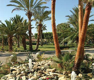 Palm Beach Htl & Bungalows 10, 21504